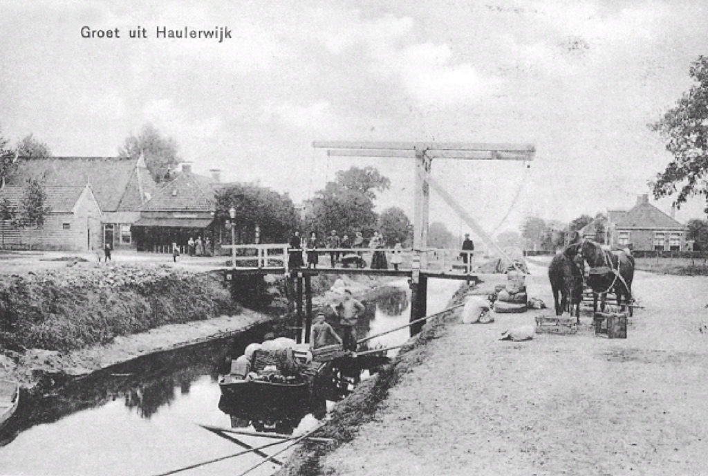 Bruine paard te Haulerwijk